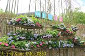 苗栗 南庄遊客中心 20190603:IMG_0830.jpg