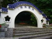 桐花-虎頭山經國梅園 and 三聖宮後山 20100416:P1020127.JPG
