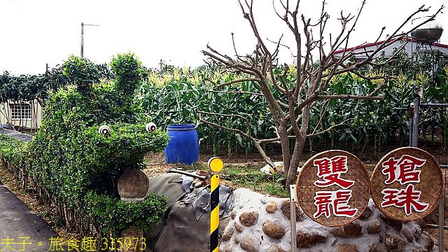 315973.jpg - 台南市白河區汴頭里 石斛蘭瀑布 20210427