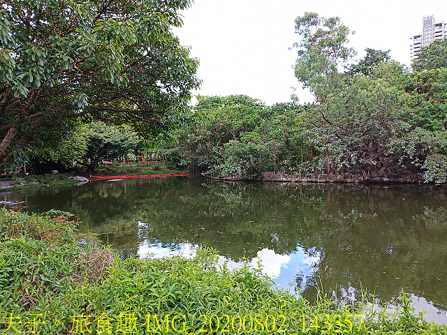 IMG_20200802_143357.jpg - 台北市大安森林公園 20200802
