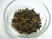 2011年全國東方美人茶評鑑比賽參等獎優等獎:P1080173.JPG