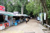 泰國喀比翡翠池 Emerald Pool krabi  20160206:IMG_5492.jpg