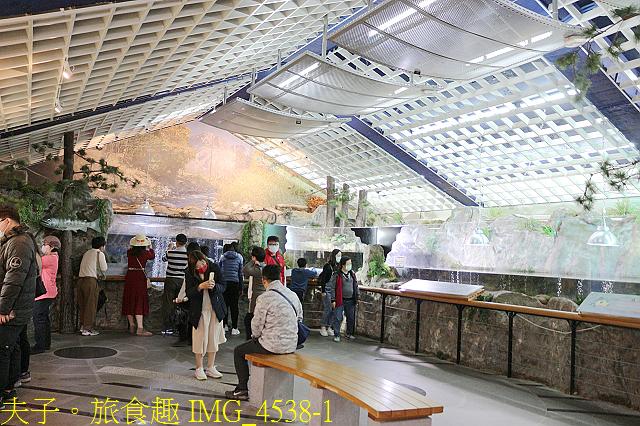 2021年 武陵農場 山櫻花、紅粉佳人 繽紛綻放 20210214:IMG_4538-1.jpg