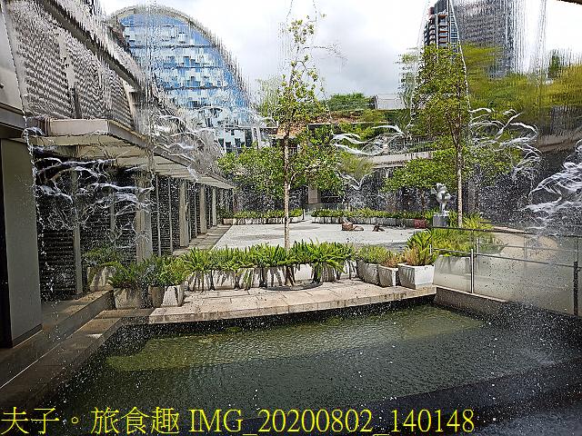 IMG_20200802_140148.jpg - 台北市大安森林公園 20200802