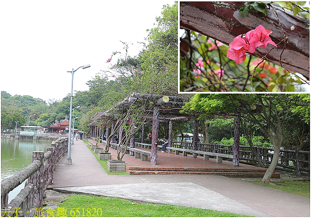 651820.jpg - 台北市內湖區碧湖公園 20210317