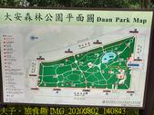台北市大安森林公園 20200802:IMG_20200802_140843.jpg