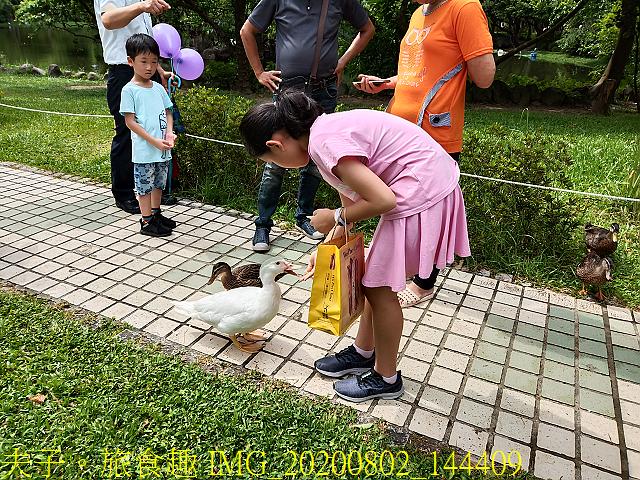 IMG_20200802_144409.jpg - 台北市大安森林公園 20200802