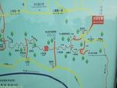 林口新林步道拍五楊高架車軌 2013/05/25:IMG_1716.jpg