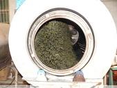 翠玉烏龍茶製作 3 - 揉捻成型 :P1090992.JPG