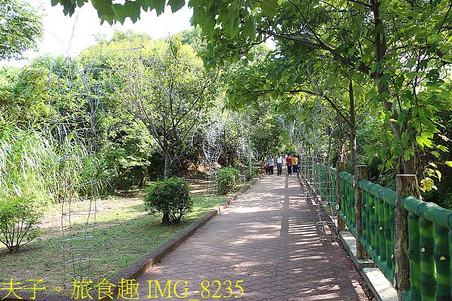 IMG_8235.jpg - 桃園平鎮 石門大圳過嶺步道 陂塘迷宮 20200922