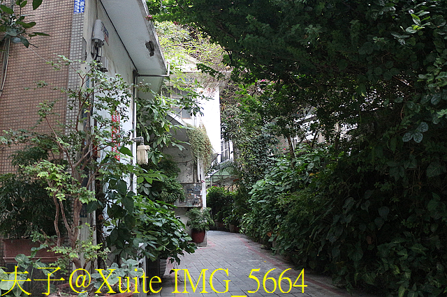 IMG_5664.jpg - 彰化古城遺蹟,探訪小西街巷 20191103