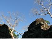 吳哥窟  Angkor Wat 浮光掠影:吳哥窟寶劍寺 Preah Khan-P1000126.JPG