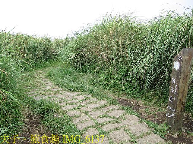 IMG_6137.jpg - 陽明山國家公園 面天山 - 向天山步道 向天池、向天山、面天山 20200916