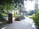 大溪老街(老城區) 2009/10/30 :P1050172.JPG