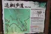 嘉義阿里山鄉迷糊步道(米洋溪步道) 2015/07/18:IMG_2519.jpg