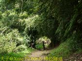 三貂嶺瀑布群 20180813 :P1060629 綠色隧道.jpg