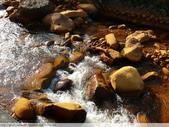 金瓜石黃金瀑布 2010/01/18 :P1060814.JPG