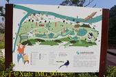 大漢溪山豬湖生態親水園區 20181107:IMG_9074.jpg