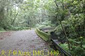 新竹尖石鴛鴦谷瀑布 20190904:IMG_1439.jpg