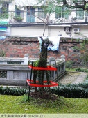 越南河內文廟 2012/01/21:P1040669.jpg