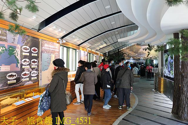 2021年 武陵農場 山櫻花、紅粉佳人 繽紛綻放 20210214:IMG_4531.jpg
