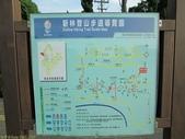 林口新林步道拍五楊高架車軌 2013/05/25:IMG_1717.jpg