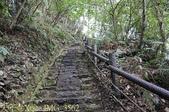 谷關捎來步道 谷關七雄老四-波津加山步道 暖身路段 20150221:IMG_3562.jpg