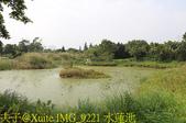 大漢溪山豬湖生態親水園區 20181107:IMG_9221 水蓮池.jpg