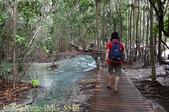 泰國喀比翡翠池 Emerald Pool krabi  20160206:IMG_5536.jpg