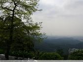 汐止大尖山天秀宮櫻花 2011/03/14:P1010586.JPG