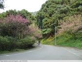 汐止彌勒山天道清修院 2011/03/14 :P1010722.JPG