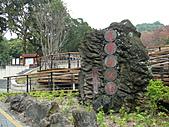 桃園市虎頭山公園整修完成+楓香紅了 2011/01/13:P1110930.JPG