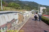 北投社三層崎公園「台版富良野花海」20210203:IMG_4161.jpg