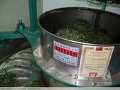 桃映紅茶製作初體驗 2010/08/29 :P1090495.JPG