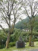 台北坪林石雕公園:P1110234.JPG