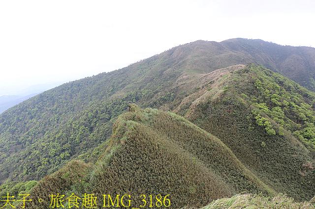 IMG_3186.jpg - 宜蘭礁溪 抹茶山 20200410