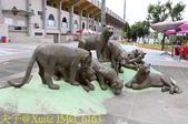 2017 KANO 夏日野球季 KANO園區 20170806:IMG_6163.jpg