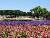 2011/04/24 花博倒數第二天, 最後的一個週日, 天氣晴, 人人山人海:P1020504.JPG