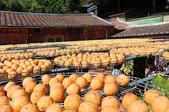 金漢杮餅教育農園 20151017:IMG_8435.jpg