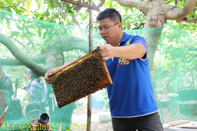 IMG_0206.jpg - 三奇蜜蜂生態農園 20190920