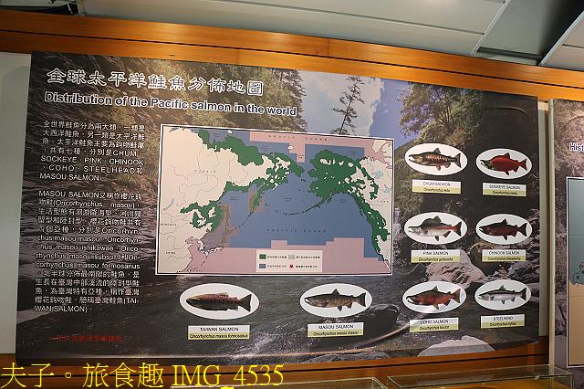 2021年 武陵農場 山櫻花、紅粉佳人 繽紛綻放 20210214:IMG_4535.jpg
