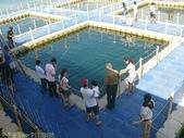 澎湖海上牧場炭烤牡蠣吃到飽, 不用鉤子釣海鱺 2012/08/17:P1120105.jpg