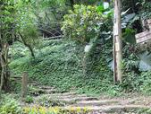 三峽鳶山彩壁 福德坑山 (鳶山) 20200603:IMG_5504 P2.jpg