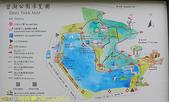 台北市內湖區碧湖公園 20210317:IMG_6376-1.jpg
