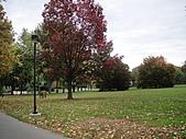 20101023 Nazareth College, Pittsford NY USA:DSC04573.JPG