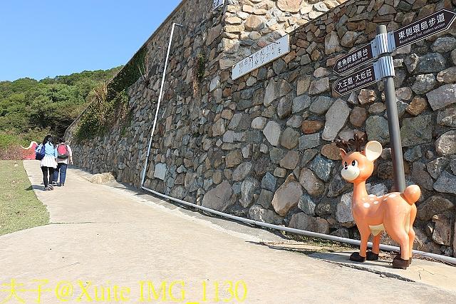 IMG_1130.jpg - 可愛的梅花鹿在大坵島等你 20171021