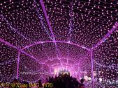 2019桃園燈會 三民燈區 20190213:IMG_4470.jpg