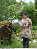 食蟲植物-宜蘭波的農場 2010/08/26:P1090367.JPG