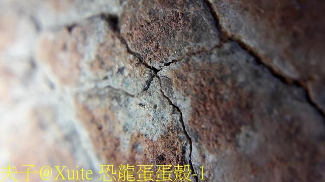恐龍蛋蛋殼-1.jpg - [玩古。古玩] 恐龍蛋 化石  2018/04/02