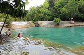 泰國喀比翡翠池 Emerald Pool krabi  20160206:IMG_5538.jpg